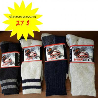 Chaussettes/Bas pour hommes - Rayés - Maxlife weathershield Polar Paws- Paquet de 12 paires